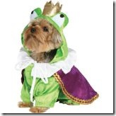 flog prince pet Halloween costume