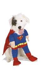 superhero pet costume