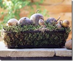 Thanksgiving Craft: Dinner Table Centerpiece