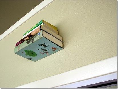 invisiblebookshelves4