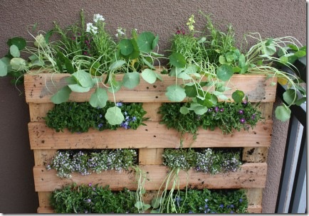recycled pallet furniture :: planter