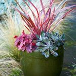 Autumn_pot_2JenniferMartine.jpg