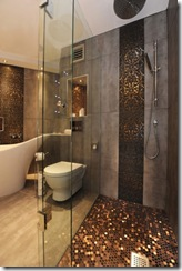 bathroom_houzz_helenscott