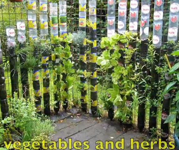 fresh vegetables bottle garden vertical gardening finecraftguildcom - Vertical Vegetable Garden Design