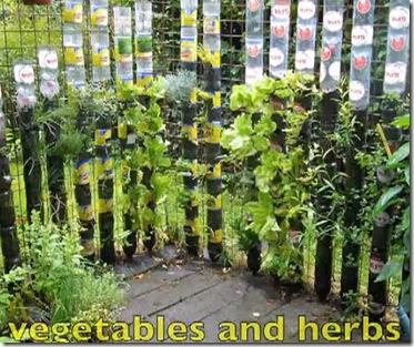fresh vegetables bottle garden :: vertical gardening :: FineCraftGuild.com