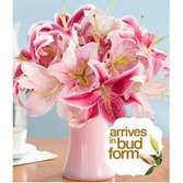 flowers_for_mothersday