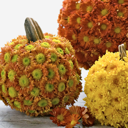 pumpkin decorating ideas with chrysanthemums