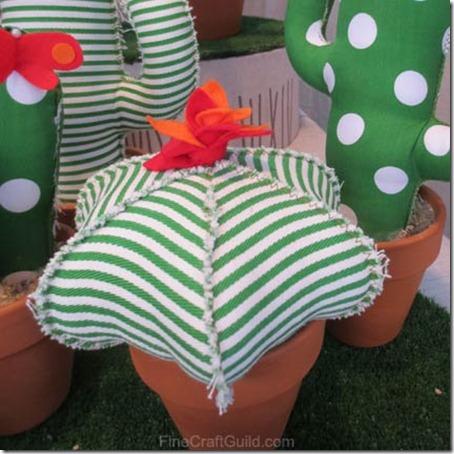 cacti_pin_cushions
