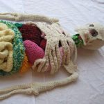 cool_kids_craft_crochet_anatomy_class_project.jpg