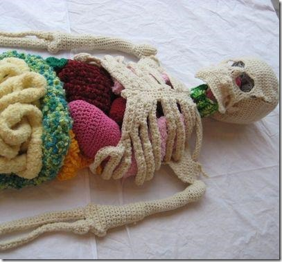 cool kids craft crochet anatomy class project
