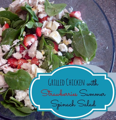 grilled chicken strawberry salad  :: FineCraftGuild.com