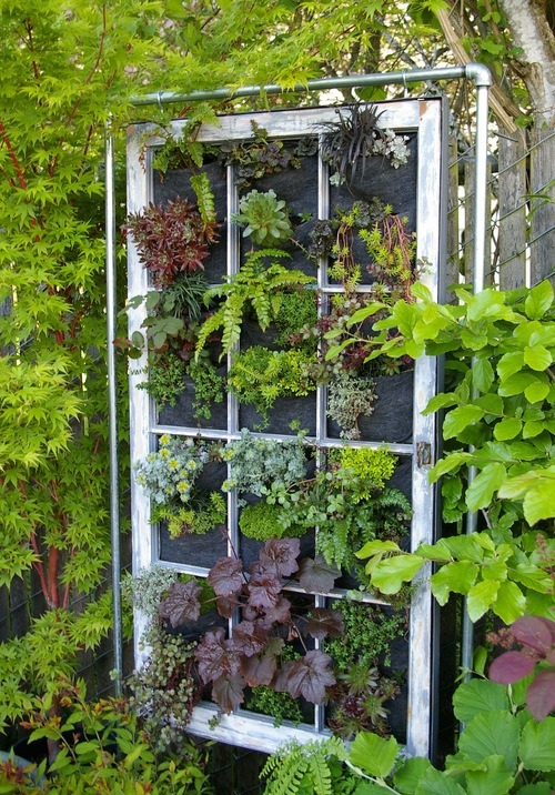 vertical garden in vintage window frame - Vertical Vegetable Garden Design