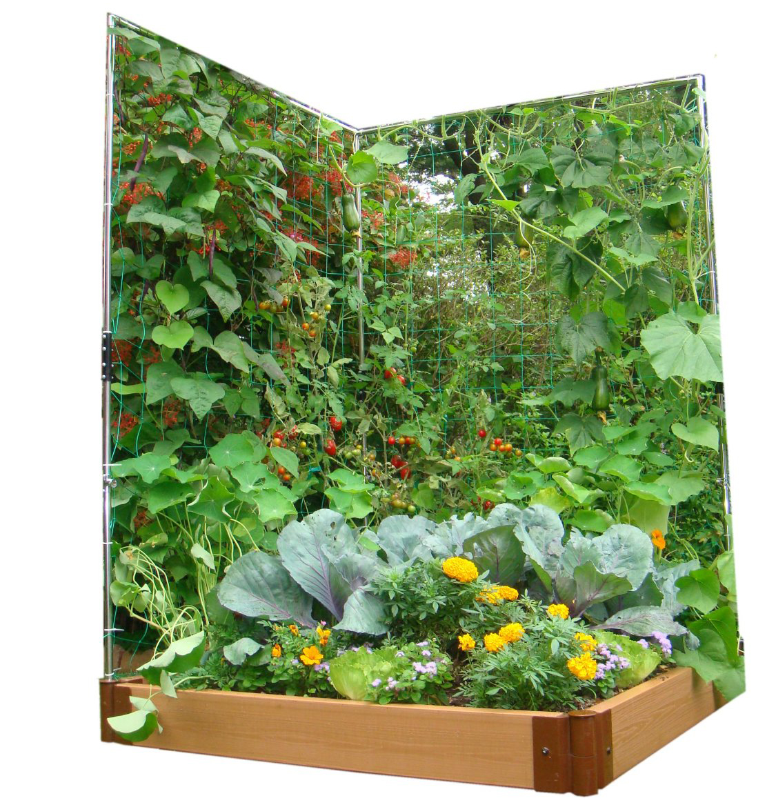 Vertical Vegetable Gardening Ideas vertical vegetable garden herbs finecraftguildcom Vegetable Plot Extension Wall Trellis