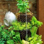 vertical_vegetable_garden_herbs.jpg