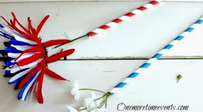 Fourth of July Flower stems and straw holders
