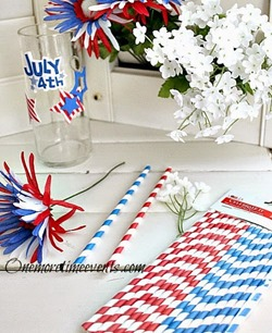 Fourth of July straws[3]