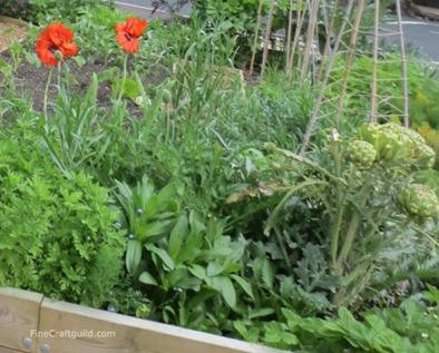curbside_vegetable_gardenin