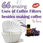 coffee_filters_uses.jpg