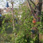 crochet_flowers_yarn_bombs_trees.jpg