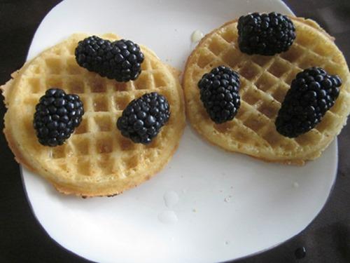 http://www.finecraftguild.com/wp-content/uploads/2015/04/Gluten_Free_Waffle_Breakfast_berries.jpg